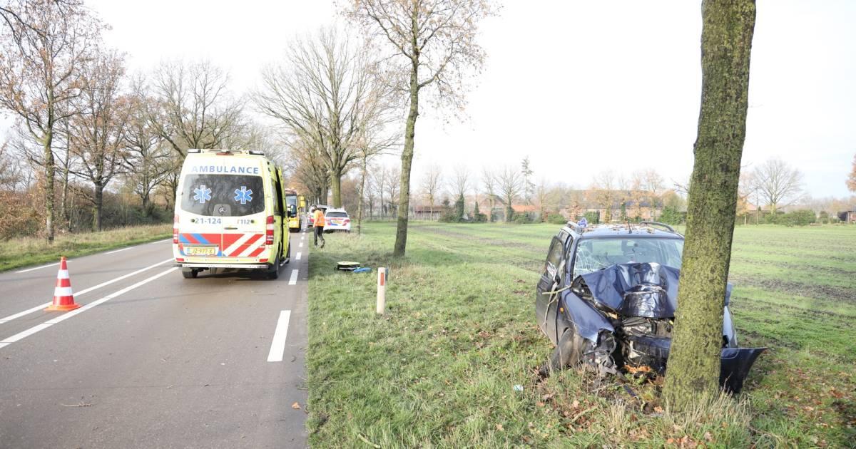 Automobiliste zwaargewond bij frontale botsing op boom in Zeeland.