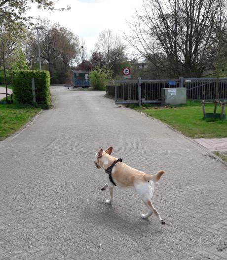 Voorstel: streep door woningen in Park Schothorst