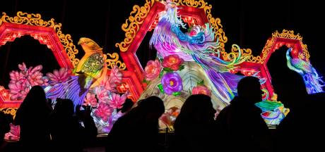 China Light Festival in Ouwehands Dierenpark is 'alsof je in een sprookjesparadijs loopt'