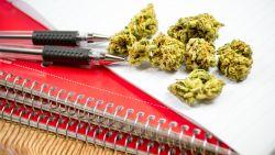 Canadese universiteit gaat specialisatie 'cannabis' aanbieden