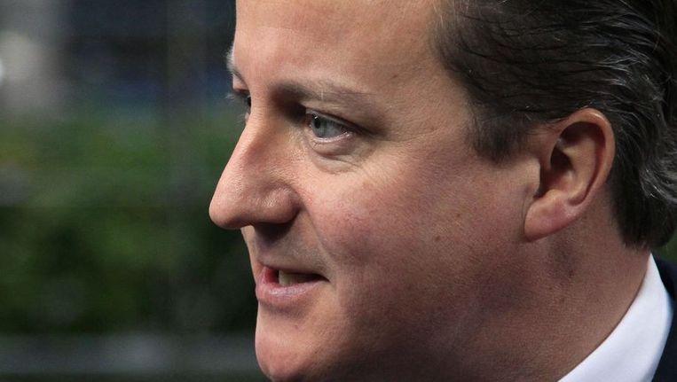 David Cameron Beeld null