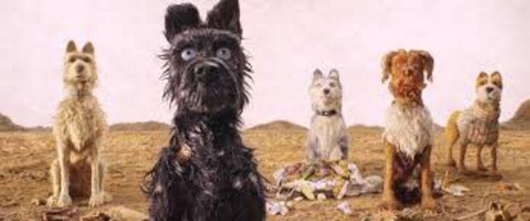Isle of Dogs Beeld