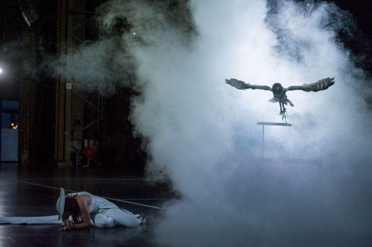 Laplanduil 'Tamino' aan het begin van de voorstelling. Links vooraan sopraan Morgane Heyse, de Koningin van de Nacht. Beeld null