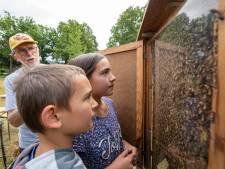 Bijenhoudersvereniging Nieuwleusen en Omstreken wint aan populariteit