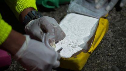 Weer megalading cocaïne onderschept in Polen