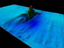 Nabestaanden slag Javazee willen  herbegrafenis stoffelijke resten