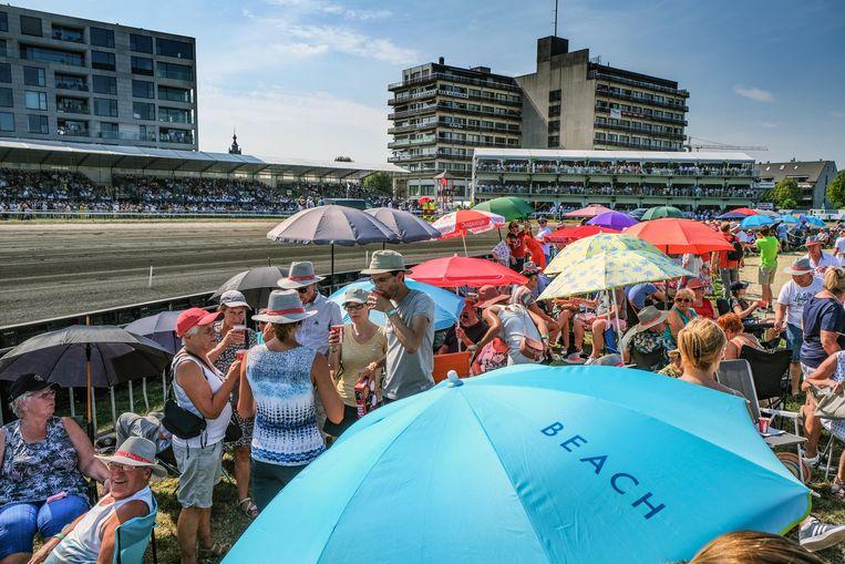 Een zee van paraplu's en parasols, tegen de zon.