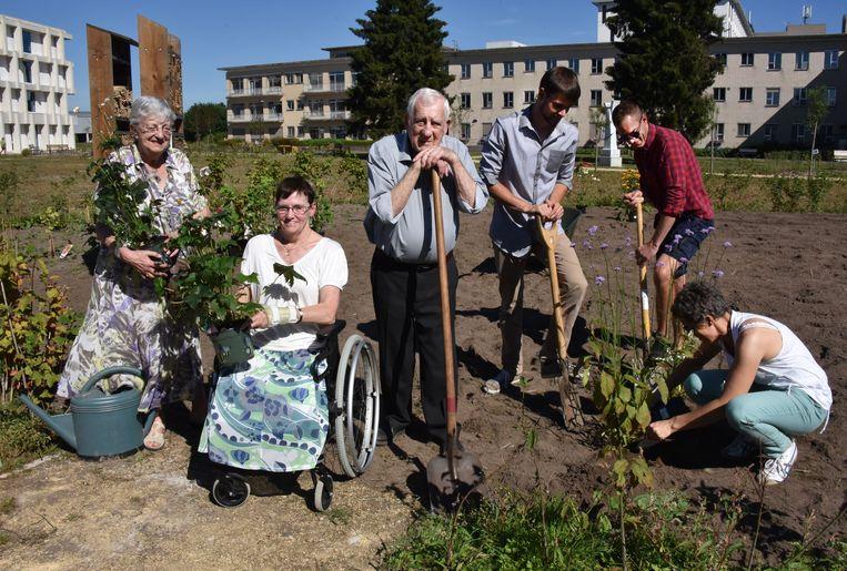 Bewoners Marthe Van Dooren, Frieda Van Sprengel en Gust Verstappen van De Wending zijn bezig met planten en krijgen hulp van Joke, Thijs en Dimitri van Natuurpunt.