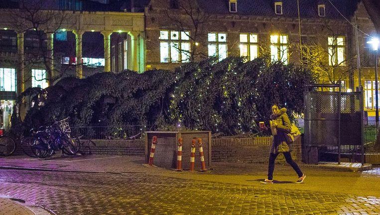 De kerstboom op het Kleine-Gartmanplantsoen is omgevallen. Beeld Maarten Brante