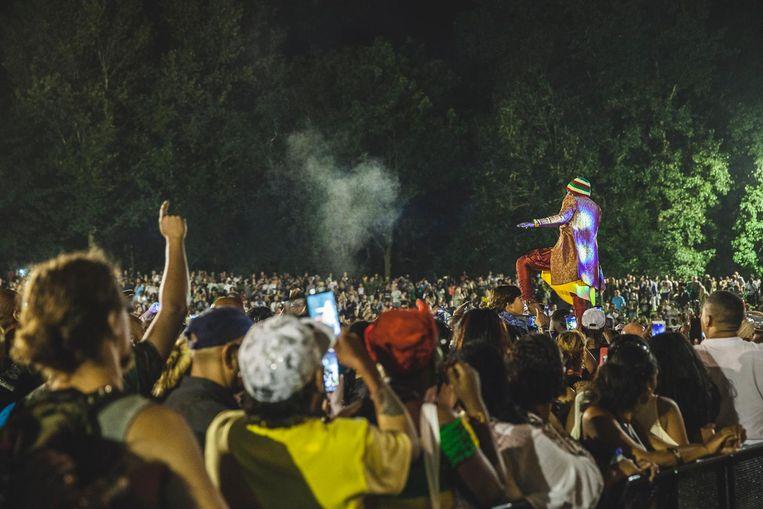 Reggae Lake ging er vorig jaar bont aan toe. Beeld Les Adu