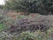 Boete voor illegaal dumpen van snoeiafval in Rilland