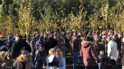 Geboortebos uitgebreid met 181 bomen: november 2018 was 'topmaand' met 21 geboortes