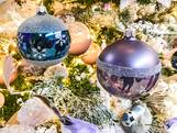 Kerstbalschutters van Moergestel zijn op zoek naar kerstbaldonoren