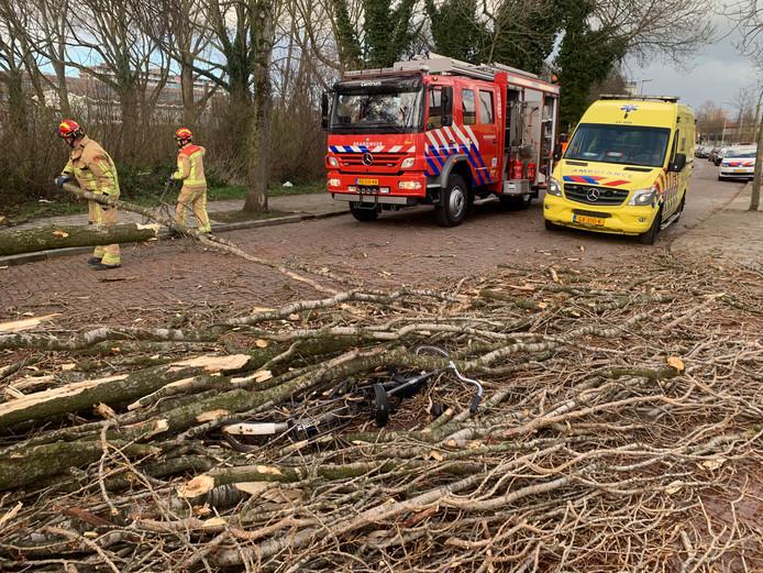 Fietser bedolven door boom na zware windstoten in Eindhoven.