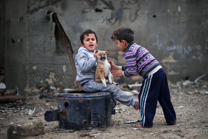 Palestijnse kinderen spelen op de resten van een afgedankte wasmachine met een puppy in een vluchtelingenkamp in Gaza City. Foto Mohammed Abed