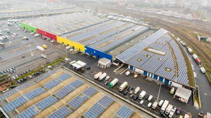 Vroegmarkt installeert grootste zonnepanelenveld van Brussel