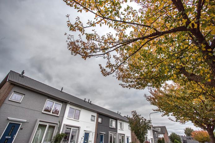 Problemen rondom de sociale huisvesting in het Lochemse. De gemeente kan beperkt nieuwe plannen steunen voor de bouw of renovaties van deze huurwoningen. Want daarvoor is de stem van een huurdersvereniging nodig. En juist die stem ontbreekt na conflicten tussen woningcorporatie Viverion en de huurdersvereniging.