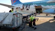 Regering plant nog repatriëringsvluchten