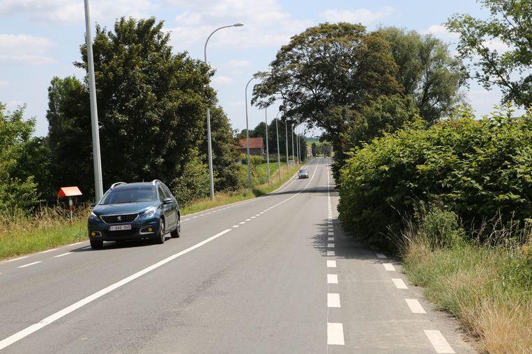 Het fietspad langs de Hannuitsesteenweg is overgroeid door de Japanse duizendknoop.