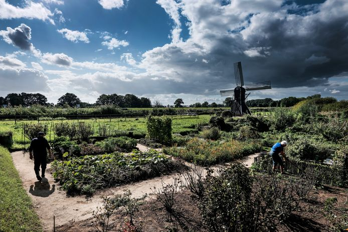 De plannen voor windmolens nabij Laag-Keppel liggen voorlopig stil, maar even verderop langs de Oude IJssel bij Doetinchem worden wel plannen ontwikkeld voor vier of vijf windmolens.