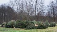 Kerstboominzameling in Drapstraat en op kerkplein Eke