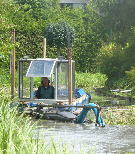 Lopik begint met ruiming woekerende waterplant
