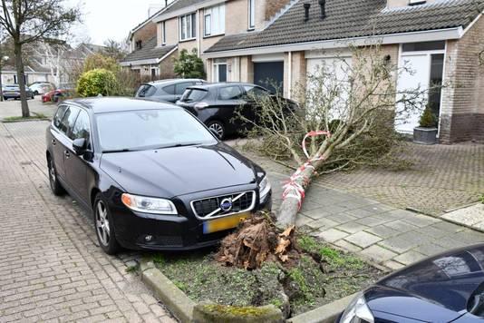 Er ontstond lichte schade aan de auto op de Kingstraat in Middelburg, maar het had veel erger kunnen zijn.