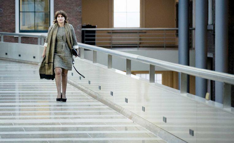 Minister van Buitenlandse Handel en Ontwikkelingssamenwerking Lilianne Ploumen. Beeld anp