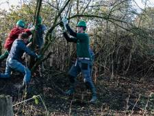 Fruitbomen snoeien in Wierden op Natuurwerkdag