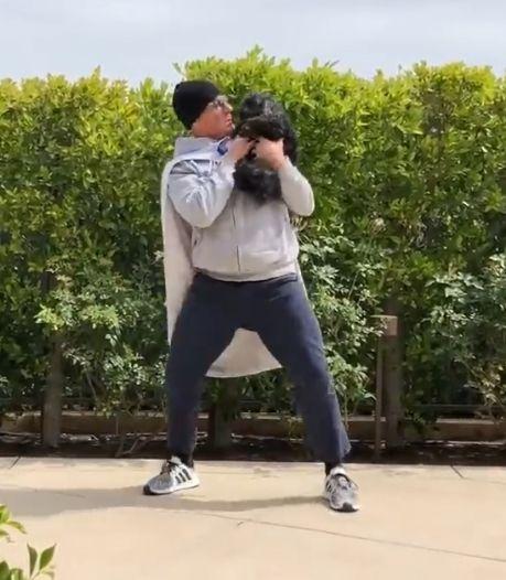 Jean-Claude Van Damme: le super-héros pour chiens