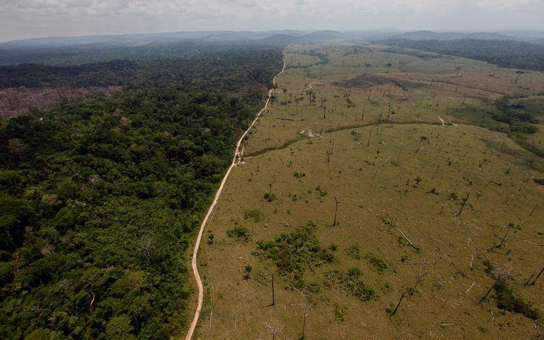 Gekapt regenwoud in de noordelijke Braziliaanse deelstaat Para. Foto uit 2009.
