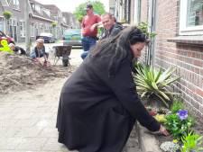 Geveltuintjes Bredase Reinierstraat: kleine groene oases tussen steen en blik
