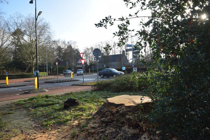 De boom op de hoek Rillaersebaan/Tilburgseweg is gekapt.