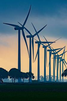 Windmolens in Flevoland draaien door als er vogels in de buurt zijn