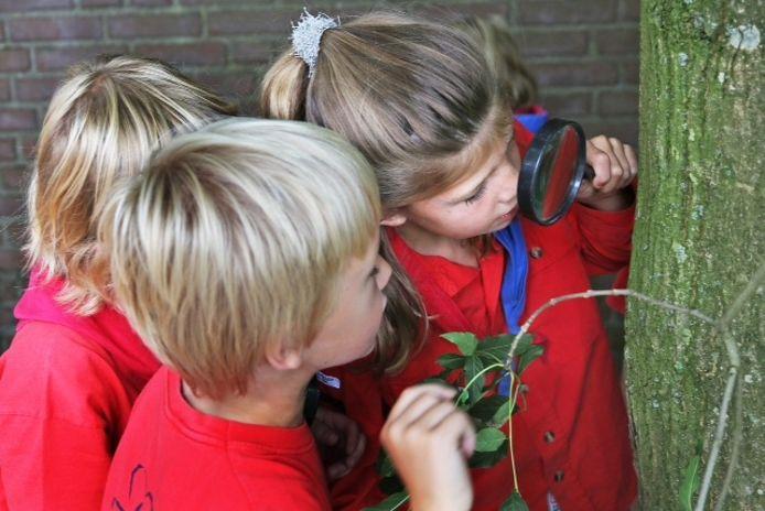 De kinderen van de scouting
