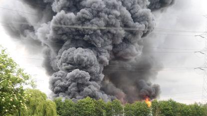 Zware uitslaande industriebrand in Bavikhove: vuur onder controle en geen giftige stoffen vrijgekomen, deel buurtbewoners mag terug naar huis
