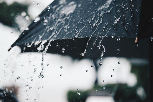 paraplu regen