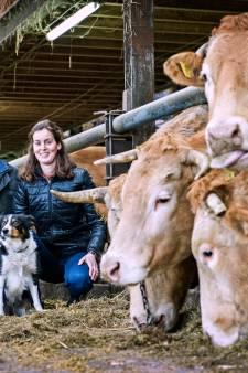 'Het is oorlog in Soest rond verhuizing boer André van Dorresteijn'