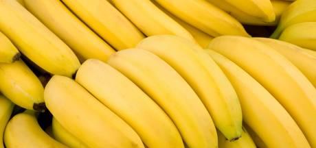 Megavangst in haven Vlissingen: 1200 kilo cocaïne tussen bananen