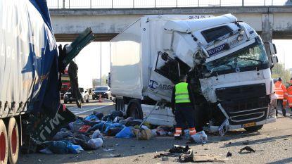 VIDEO. Vrachtwagens botsen in staart van file door wegenwerken op E17