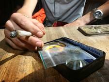Krijgt Nederland legale professionele wietkwekerijen?