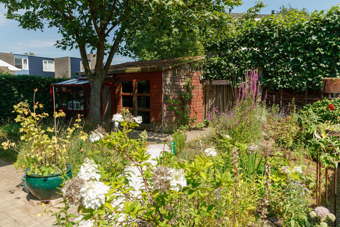 Wil en Marion geven plant en dier de ruimte in hun stadstuin.