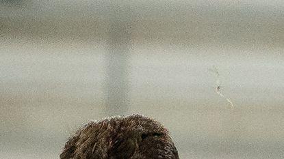 De best scorende defensie: elk 4 goals