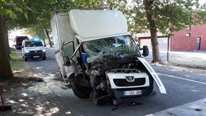 Bestuurder gewond na crash tegen boom
