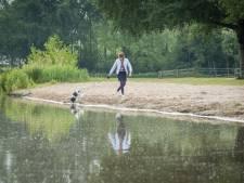Gemeente Molenlanden zoekt 'investeerders' voor de Slingelandse Plassen