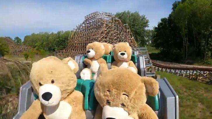 Knuffelberen maken de rit van hun leven in achtbaan Walibi