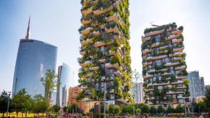 Meer groen in de stad: deze vijf projecten geven het goede voorbeeld