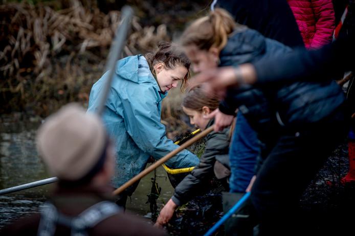 Bioloog Verena Stuit bekijkt met de kids wat ze gevangen hebben.