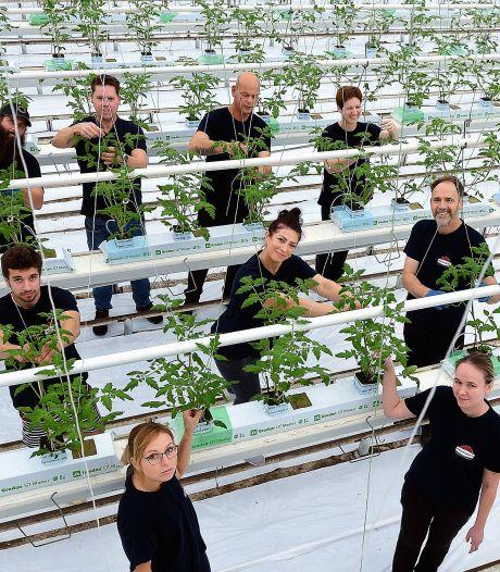 Bergen op Zoom maakt nieuwe regels joblodges voor arbeidsmigranten