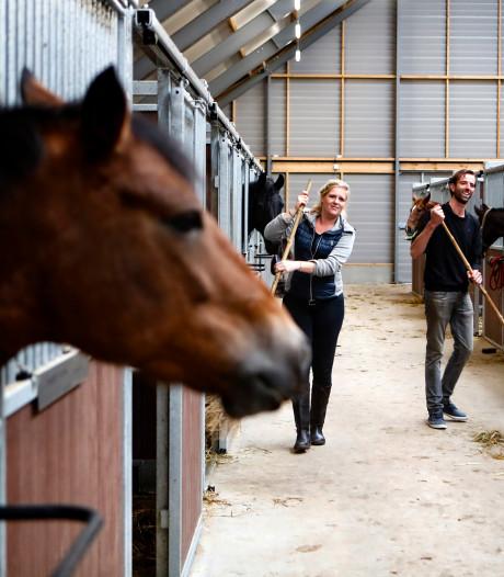 Sjoerd en Sharen herbouwen manege na bizarre brand waarbij zestig paarden met een noodgang de wei in moesten